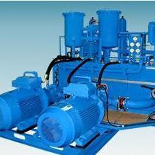 德国fluvo schmalenberger GmbH + Co. KG泵