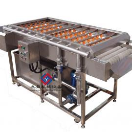 红枣清洗机,洗果机,果蔬清洗净化机,橄榄圣女果清洗机