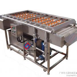 红枣清洗机、万能洗果机、洗菜机、水果清洗机