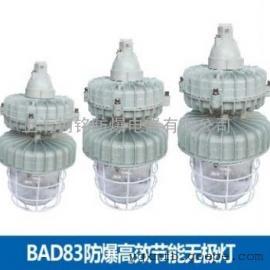 BCD-150g防爆无极灯
