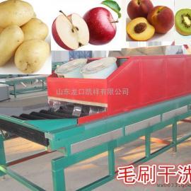 马铃薯干洗风干机,马铃薯清洗分选机,土豆清洗风干分选机