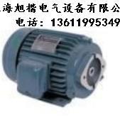 台湾DEN SEN CO.LTD 电机5HP 3.7KW
