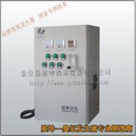 二次供水消毒设备/臭氧发生器