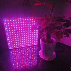 大量生产批发LED植物灯,28W植物生长灯,LED贴片植物灯