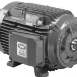 德国Motovario GMBH电机