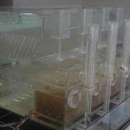 水处理试验设备(透明装置)无锡概念环保