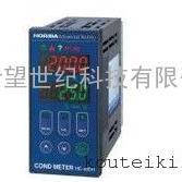日本 HORIBA 工业在线高电导率监测仪 HE-480H