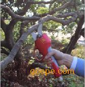 香港园林果树修剪电动剪刀首先嘉航品牌,质量三包。物美价廉