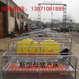 养猪专用设备双体母猪产床生产厂家