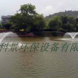 河流水处理曝气机_喷泉曝气机_提水式喷泉曝气机