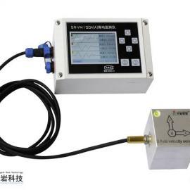 SR-VM1004(A)振动监测仪