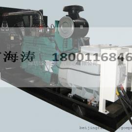 60kw 潍柴沼气发电机 燃气专用发动机