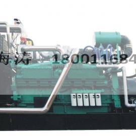 80kw 天然气发电机 燃气专用发动机
