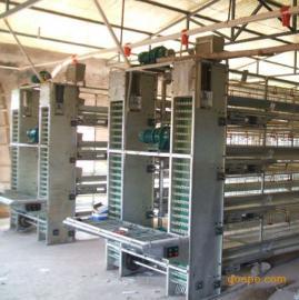 养鸡设备自动捡蛋机生产厂家