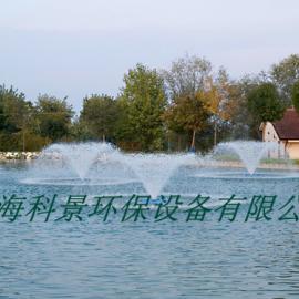 酒店景观湖水处理设备喷泉曝气机