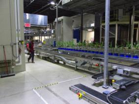 PlantScreen植物表型成像分析系统(自动传送版)