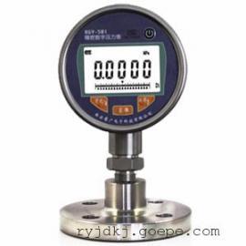RGY-100法兰隔膜式数字压力表