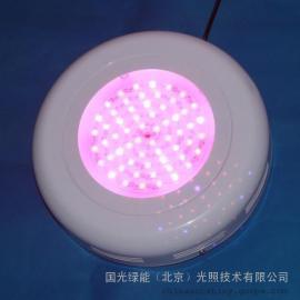 北京LED育苗灯 风扇型组织培养专用育苗灯 植物补光灯