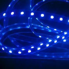 北京Led金针菇补光灯led软灯条型植物生长补光灯