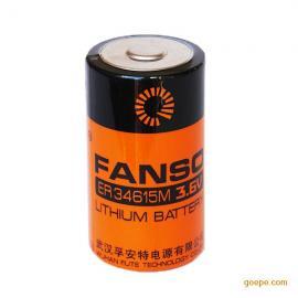 一次性锂电池 ER34615M