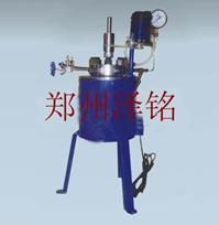 实验室用小型高压反应釜