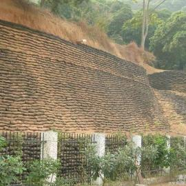 郑州枫叶生态袋大量供应