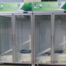 广西喜洋洋便利店 两门展示柜 饮料冰箱 冷藏柜 两门保鲜柜