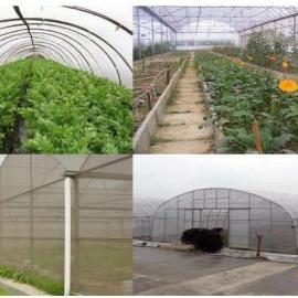 物联网远程监控管理系统 养殖业种植业温室环境集中控制方案