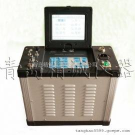 自动烟尘烟气测试仪 烟气平行采样仪 烟气采样仪