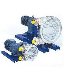 ELRO蠕动泵