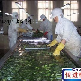 瓜果蔬菜清洗专业输送设备