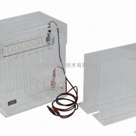 JY-SX1型 双向电泳槽君意东方