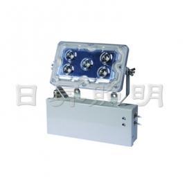 RNFE9178 LED应急低顶灯,5*3W,5*1W