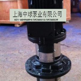【DBY20轻型多级不锈钢液下泵】