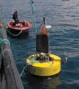 YSI 水质自动监测浮标(Endeco/YSI Buoys)配检测仪器使用