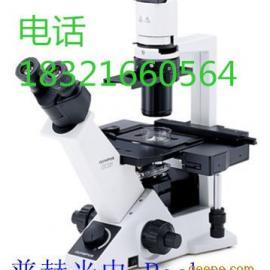 奥林巴斯倒置ckx31双目显微镜