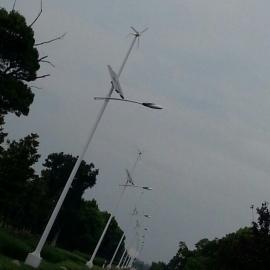 300W 风力发电机厂家供应