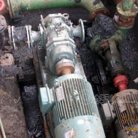 粘稠污泥泵的型号-力华泵业LH65-40超浓稠污泥泵