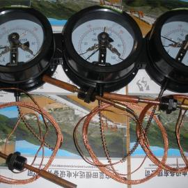 西安WTZ-288电接点压力式温度计WTZ样册、资讯