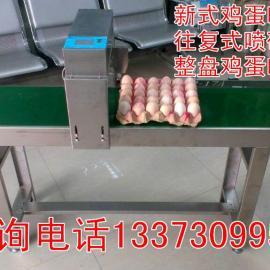 广西鸡蛋喷码机,南宁全自动鸡蛋喷码机厂家直销