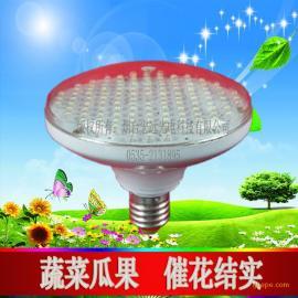 LED植物灯 led植物补光灯 花果期专用补光灯