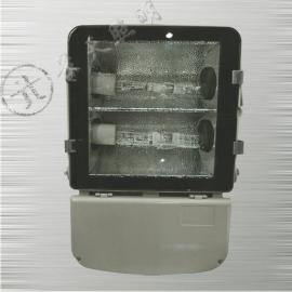 GT003防水防尘防震泛光灯/ GT003-L400/双光源