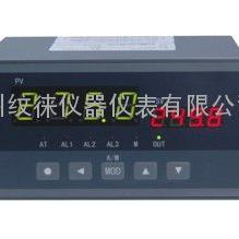 XSC5/A-HRT2C1A1B1V0调节仪