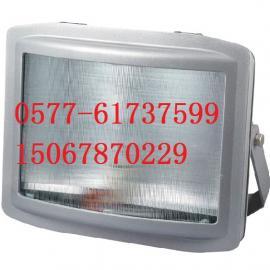 防震型GT001-L150防水防尘泛光灯