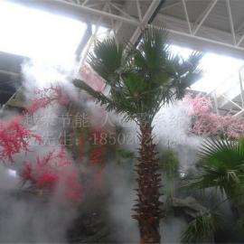 天津人造雾方案,人造雾图片,天津人造雾案例