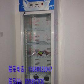 郑州酸奶机/海蓝双门酸奶机