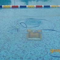 供应游泳池池底吸污机 皇后吸污机 海豚吸污机