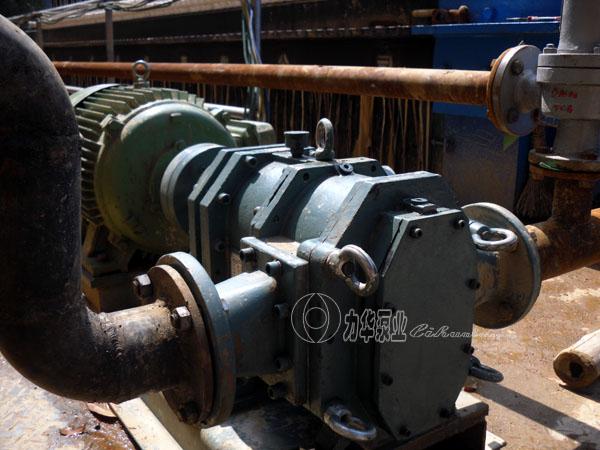 新型污泥泵选型-力华无堵塞转子泵