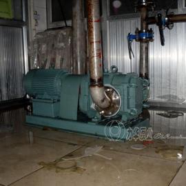 卫生级食品输送泵-LH旋转活塞泵