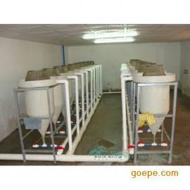 鱼苗孵化桶鱼卵孵化器